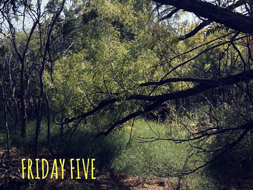 31 Days - Friday Five